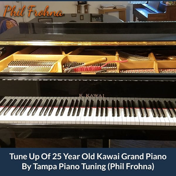 Tune Up Of 25 Year Old Kawai Grand Piano By Tampa Piano Tuning (Phil Frohna)