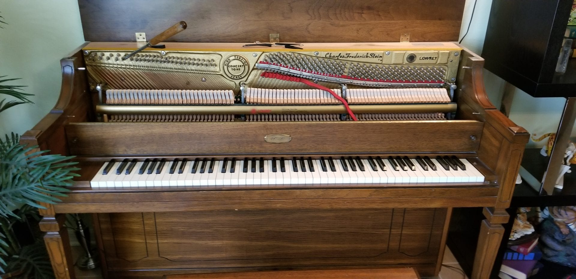 Piano Tune Up In Zephyrhills, FL By Tampa Piano Tuning